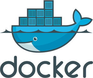 Problems Adding commands the Docker 'run' command